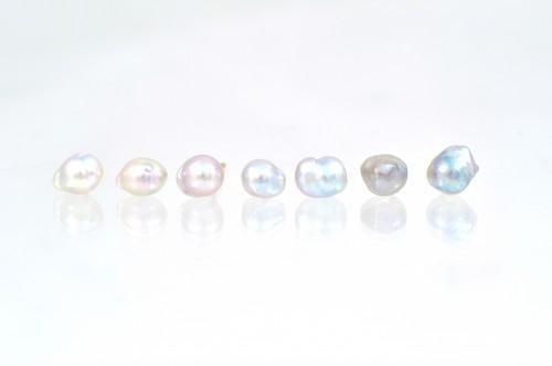 baby+akoya+pearl+K18+pierce¥15,000_2